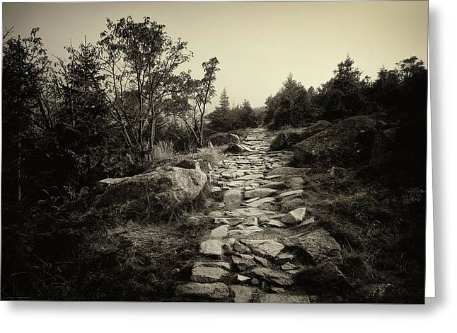 Stone Trail In The Mountains Greeting Card