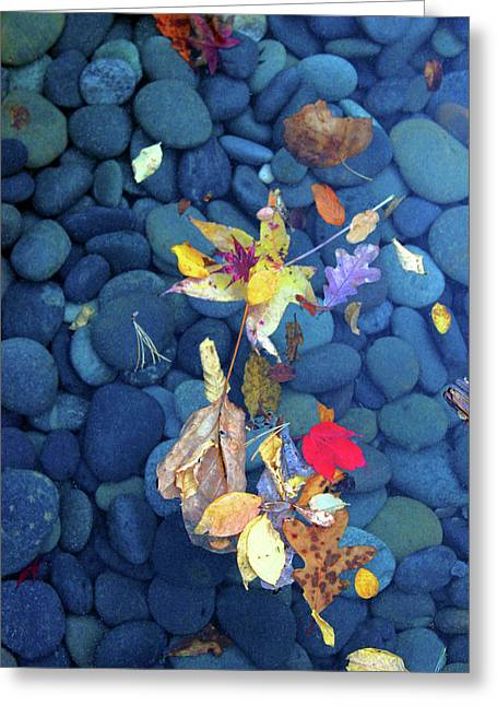 Stones0928 Greeting Card by Carolyn Stagger Cokley