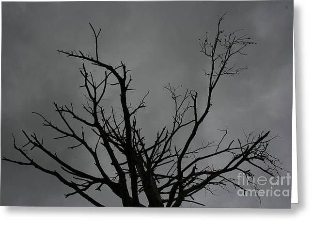 Greeting Card featuring the photograph Menacing Clouds Overshadowing by Cynthia Marcopulos