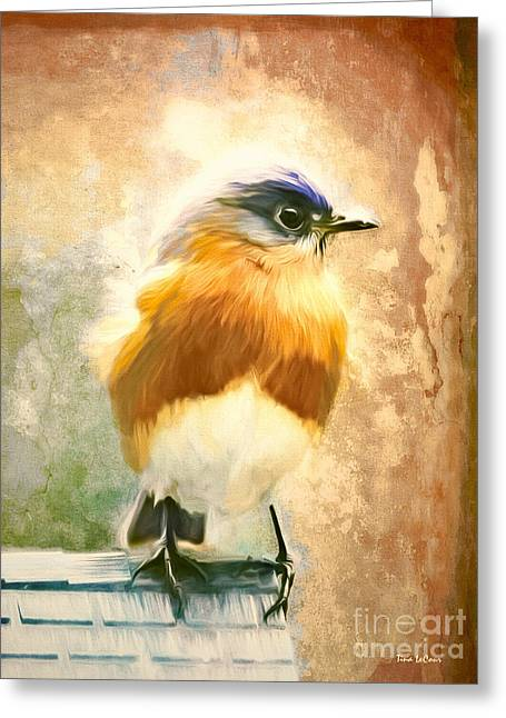 Strapping Bluebird Greeting Card by Tina LeCour