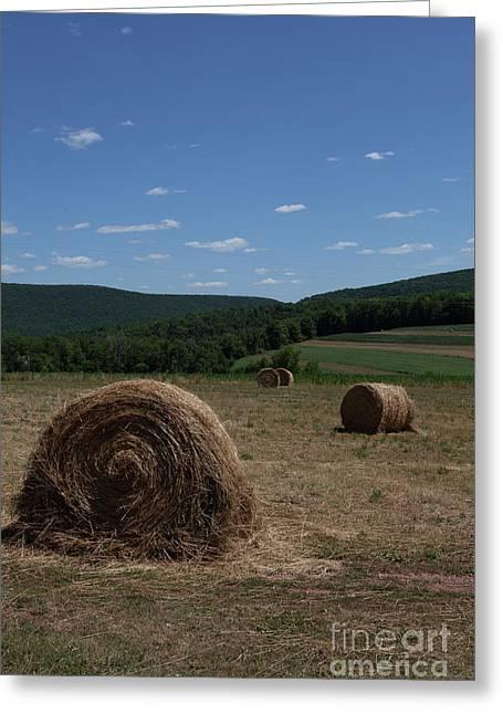 Straw Bales Greeting Card