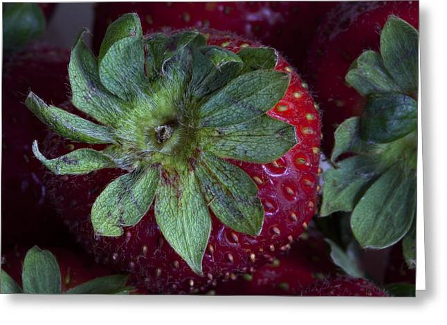 Strawberry 2 Greeting Card
