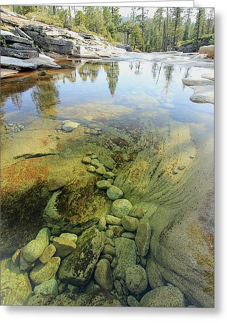 Greeting Card featuring the photograph Stream Dreams by Sean Sarsfield