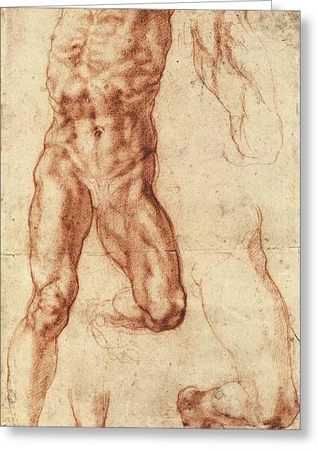 Studies For Haman Greeting Card by Michelangelo Buonarroti