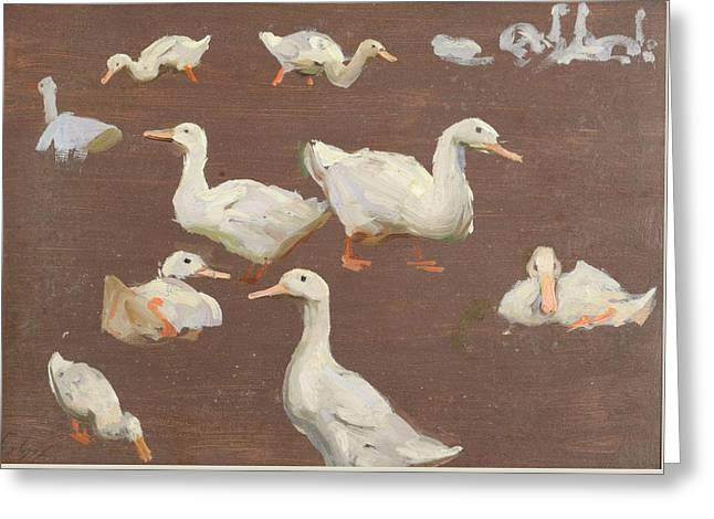 Study Of Ducks Greeting Card by Alexander Mann