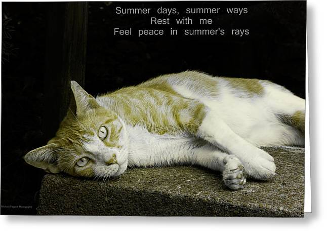 Summer Days Greeting Card by Michael Taggart II