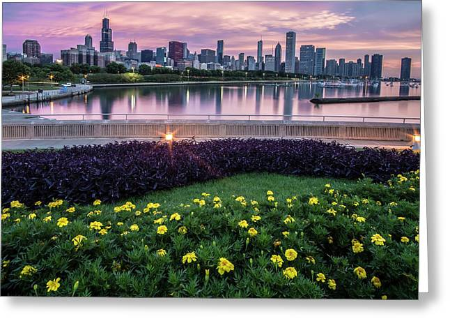 summer flowers and Chicago skyline Greeting Card