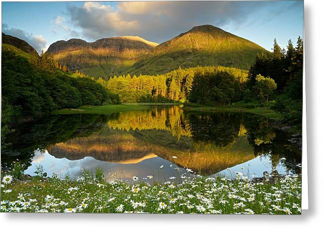 Summer Reflections In Glencoe Greeting Card
