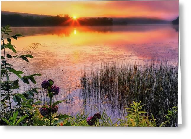 Greeting Card featuring the photograph Summer Sunrise Square by Bill Wakeley