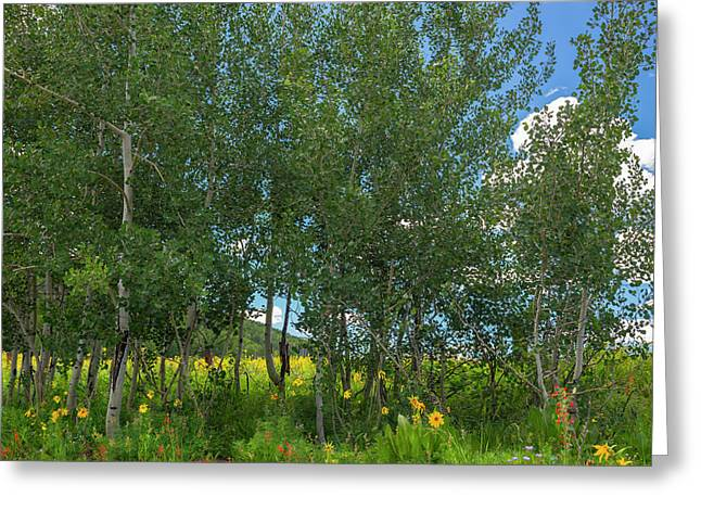 Greeting Card featuring the photograph Summer Wildflowers by Tim Reaves