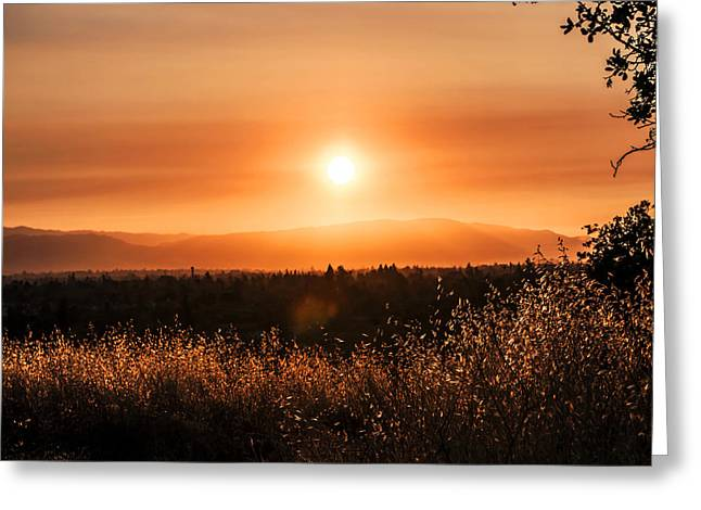 Sundown Greeting Card by Robert  Zuchowski