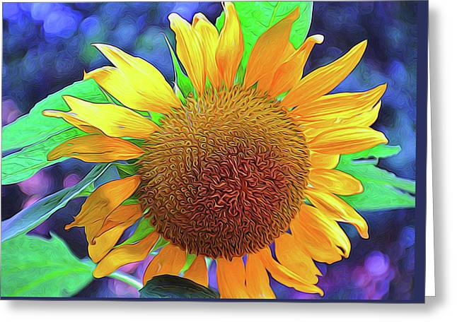 Greeting Card featuring the photograph Sunflower by Allen Beatty