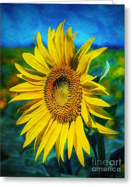 Greeting Card featuring the digital art Sunflower by Ian Mitchell