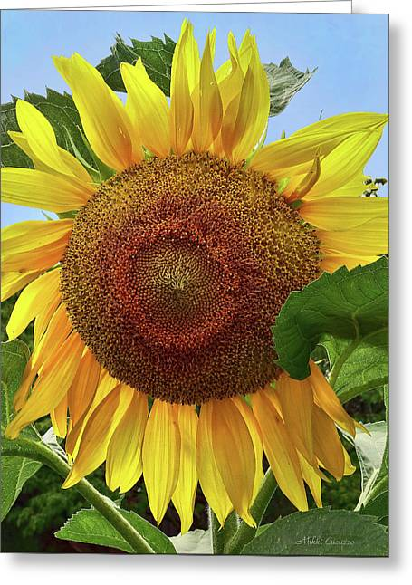 Sunflower Greeting Card by Mikki Cucuzzo