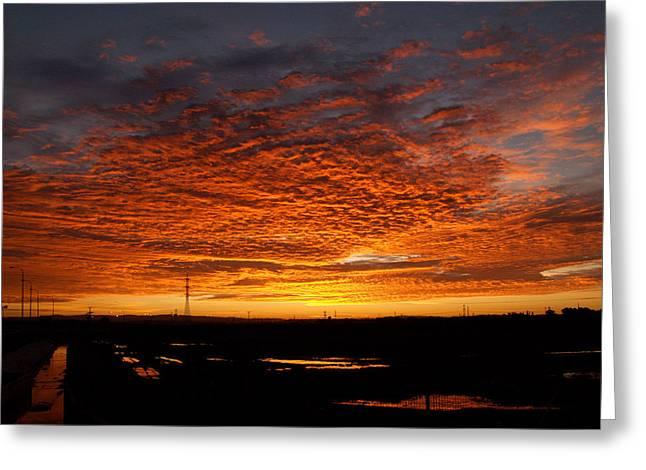 Sunrise Greeting Card by Arik Baltinester