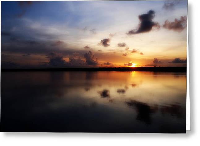 Sunrising Greeting Card by Tammy Chesney