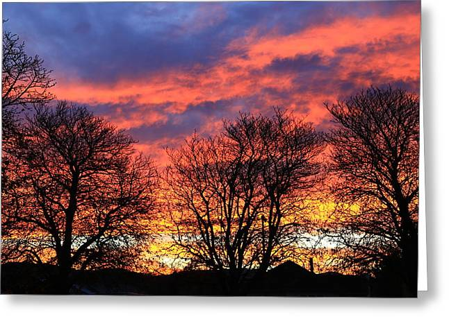 Greeting Card featuring the photograph Sunset And Filigree by Nareeta Martin