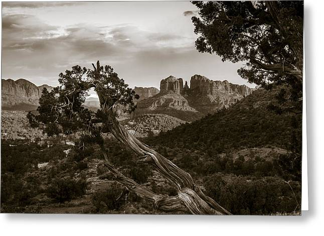 Sunset At Cathedral Rock Greeting Card by Alexey Stiop