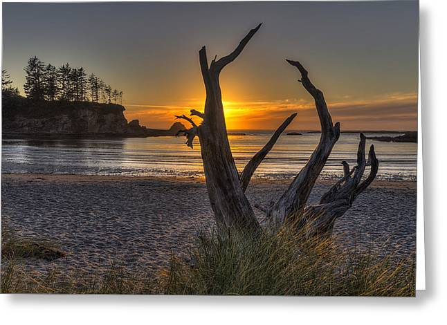Sunset Bay Greeting Card by Mark Kiver