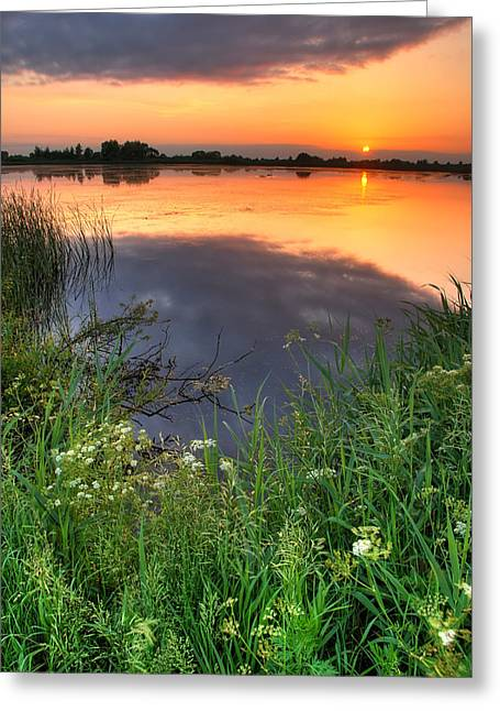 Sunset By The Lake Greeting Card by Jaroslaw Grudzinski
