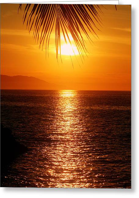 Sunset In The Frawn Greeting Card by Jason Blalock