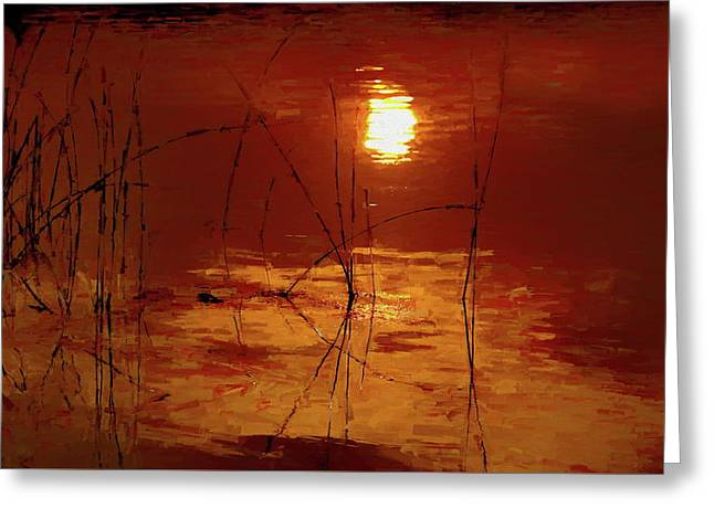 Sunset On The Bay Greeting Card by Andrea Kollo