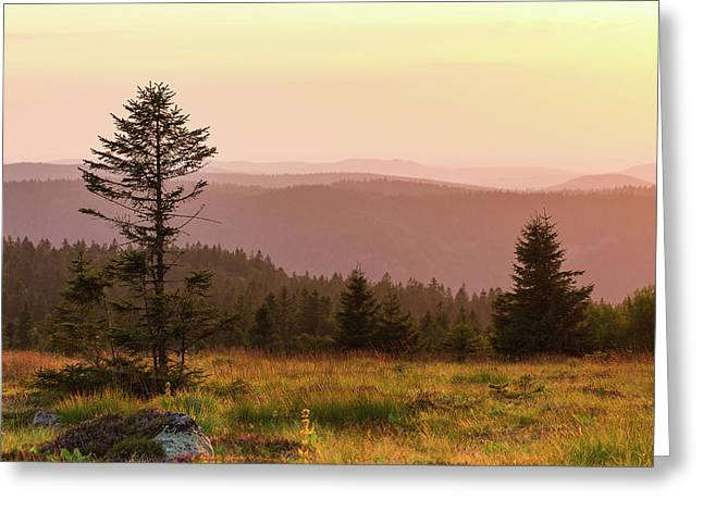 Sunset Greeting Card by Paul MAURICE