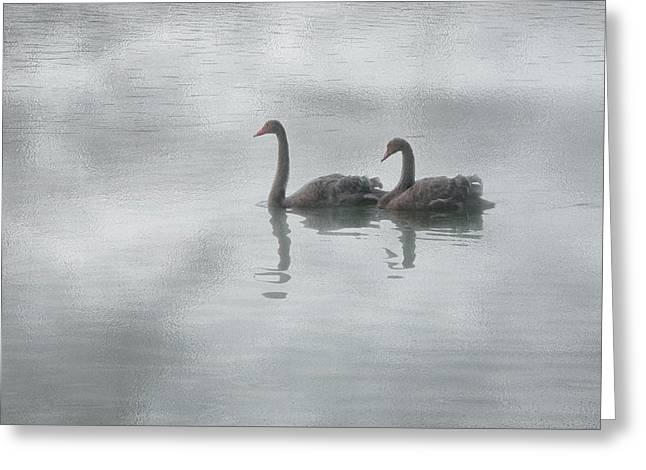 Greeting Card featuring the photograph Swan Lake by Carolyn Dalessandro