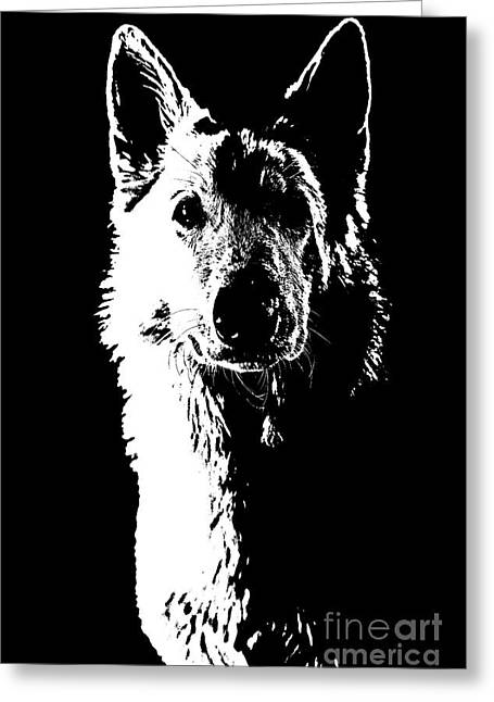 Swiss Shepherd Greeting Card