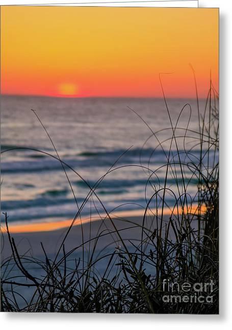 Tangerine Sunrise Greeting Card