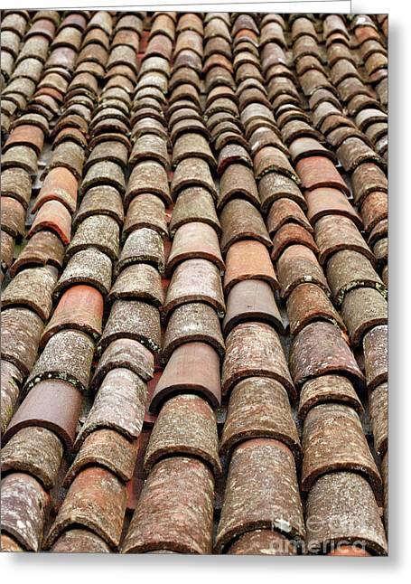 Terra Cotta Roof Tiles Greeting Card by Gaspar Avila