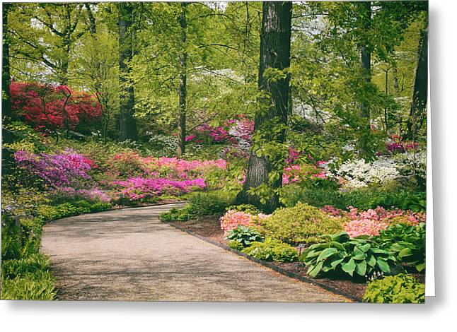The Azalea Path Greeting Card by Jessica Jenney