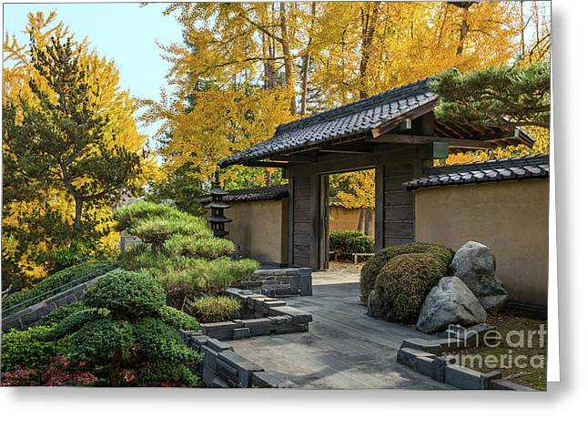 The Beautiful Fall Colors Of The Japanese Gardens Greeting Card by Jamie Pham