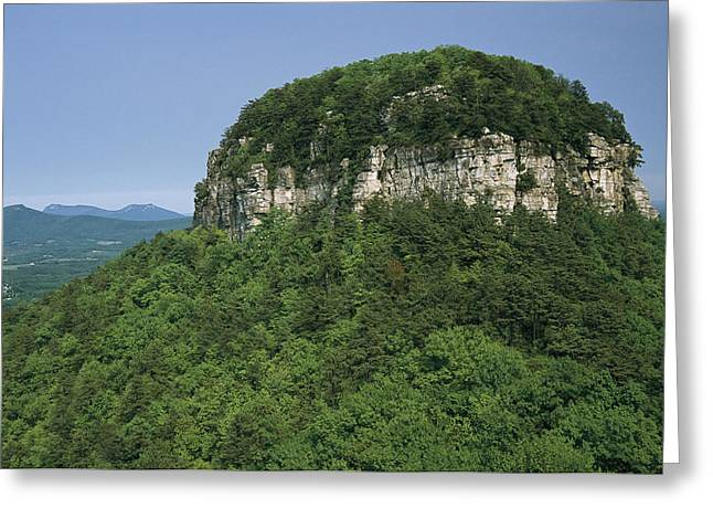 Forests And Forestry Greeting Cards - The Big Pinnacle Of Pilot Mountain. The Greeting Card by Raymond Gehman