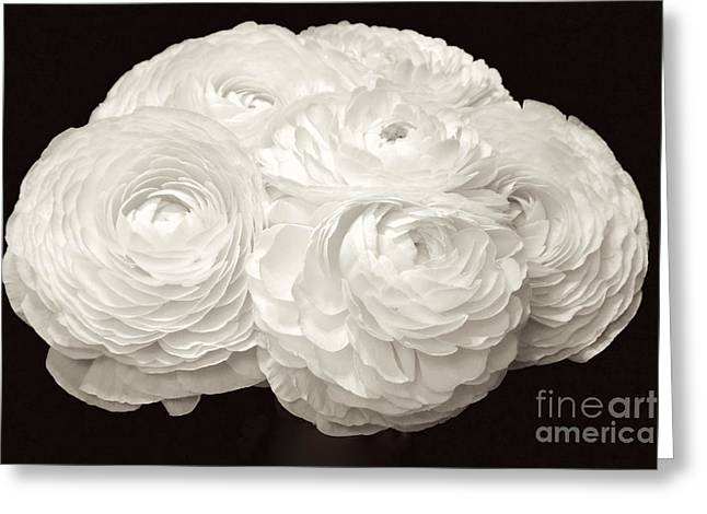 The Brides Bouquet Greeting Card by Jeannie Rhode