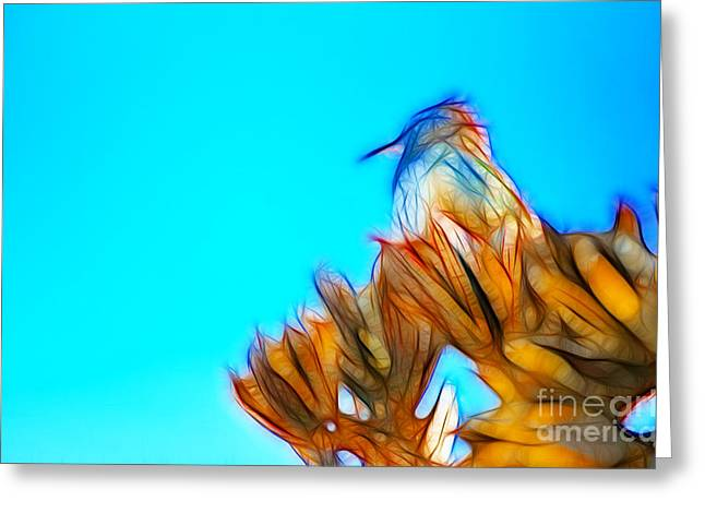The Cactus Wren Greeting Card by Donna Greene