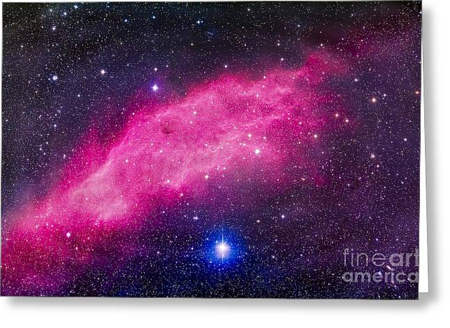 The California Nebula Greeting Card by Alan Dyer