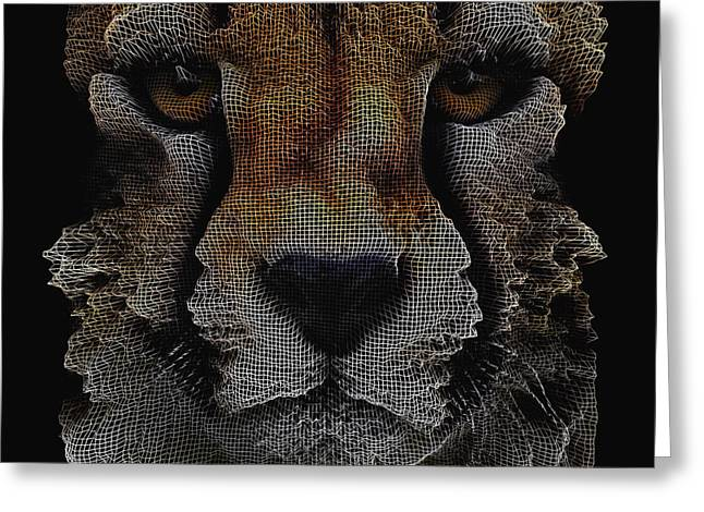 The Face Of A Cheetah Greeting Card by ISAW Gallery