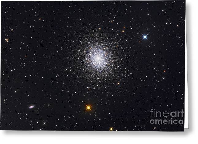 The Great Globular Cluster In Hercules Greeting Card by Roth Ritter