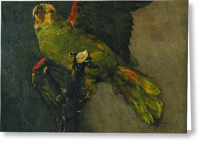 The Green Parrot Greeting Card by Vincent Van Gogh