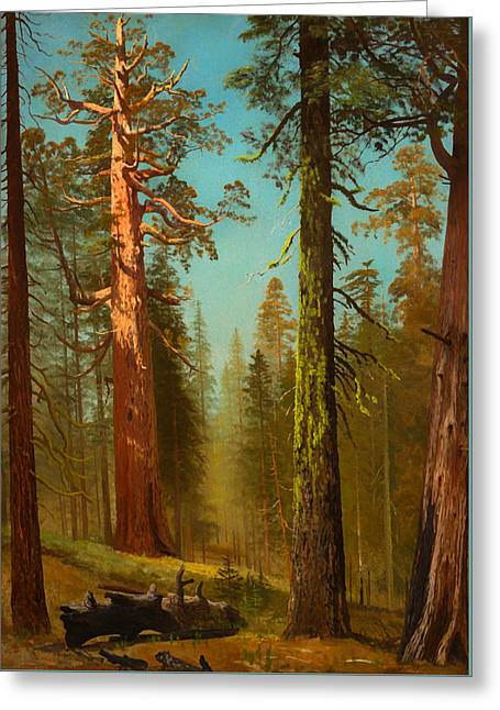 The Grizzly Giant Sequoia - Mariposa Grove California Greeting Card by Mountain Dreams
