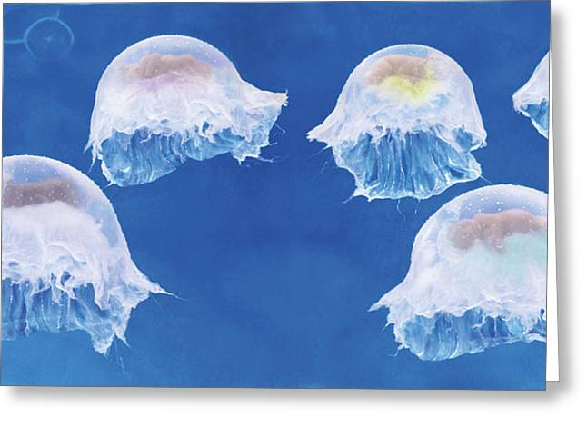 The Jellyfish Nursery Greeting Card by Anne Geddes