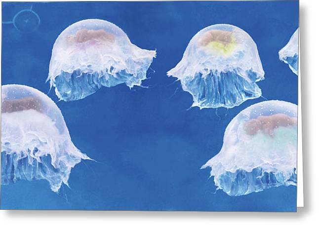 The Jellyfish Nursery Greeting Card by Anne Geddes