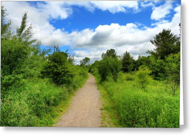 Greeting Card featuring the photograph The Path Ahead by Anthony Rego