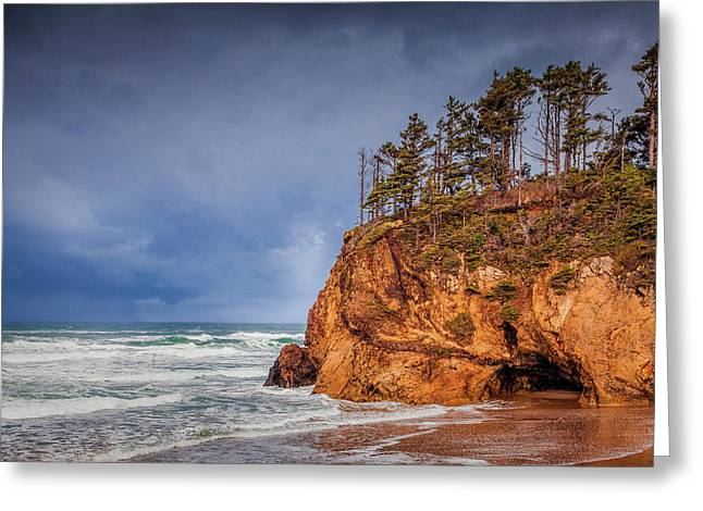 The Remote Coast Greeting Card by Andrew Soundarajan