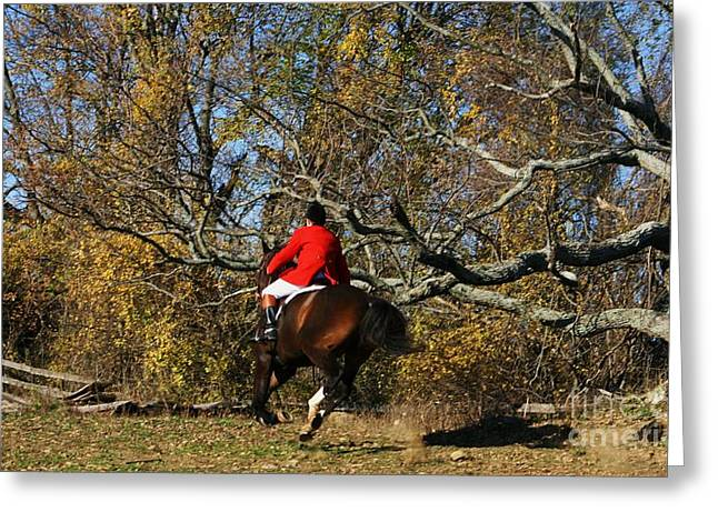 The Rider In Red Greeting Card by Valia Bradshaw