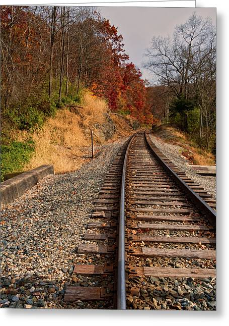 Greeting Card featuring the photograph The Tracks In The Fall by Mark Dodd