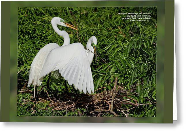 1 Thessalonians 5 11 Greeting Card by Dawn Currie