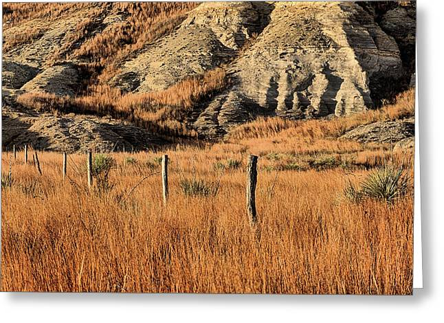 Greeting Card featuring the photograph This Is Kansas by JC Findley