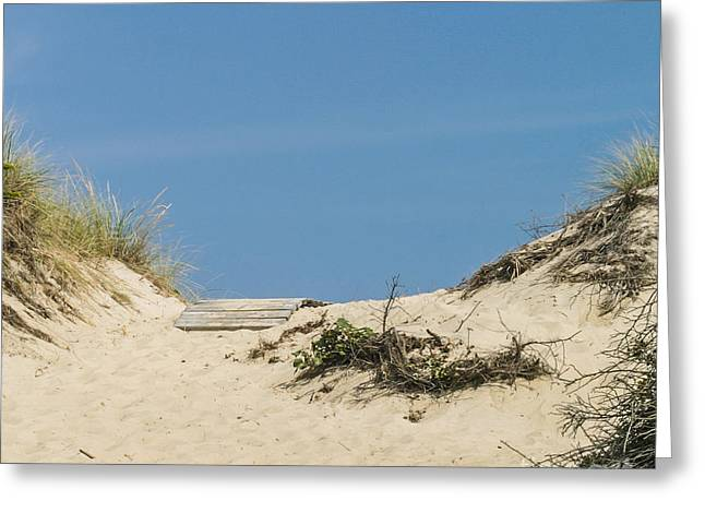 Greeting Card featuring the photograph This Way To The Beach by Michelle Wiarda